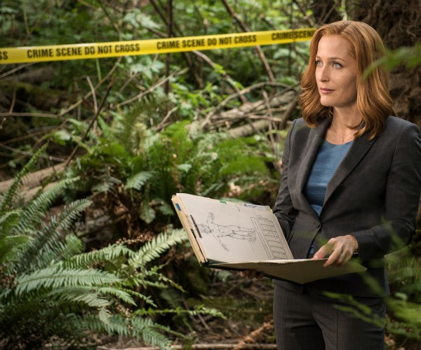 Scully standing in forest thinking
