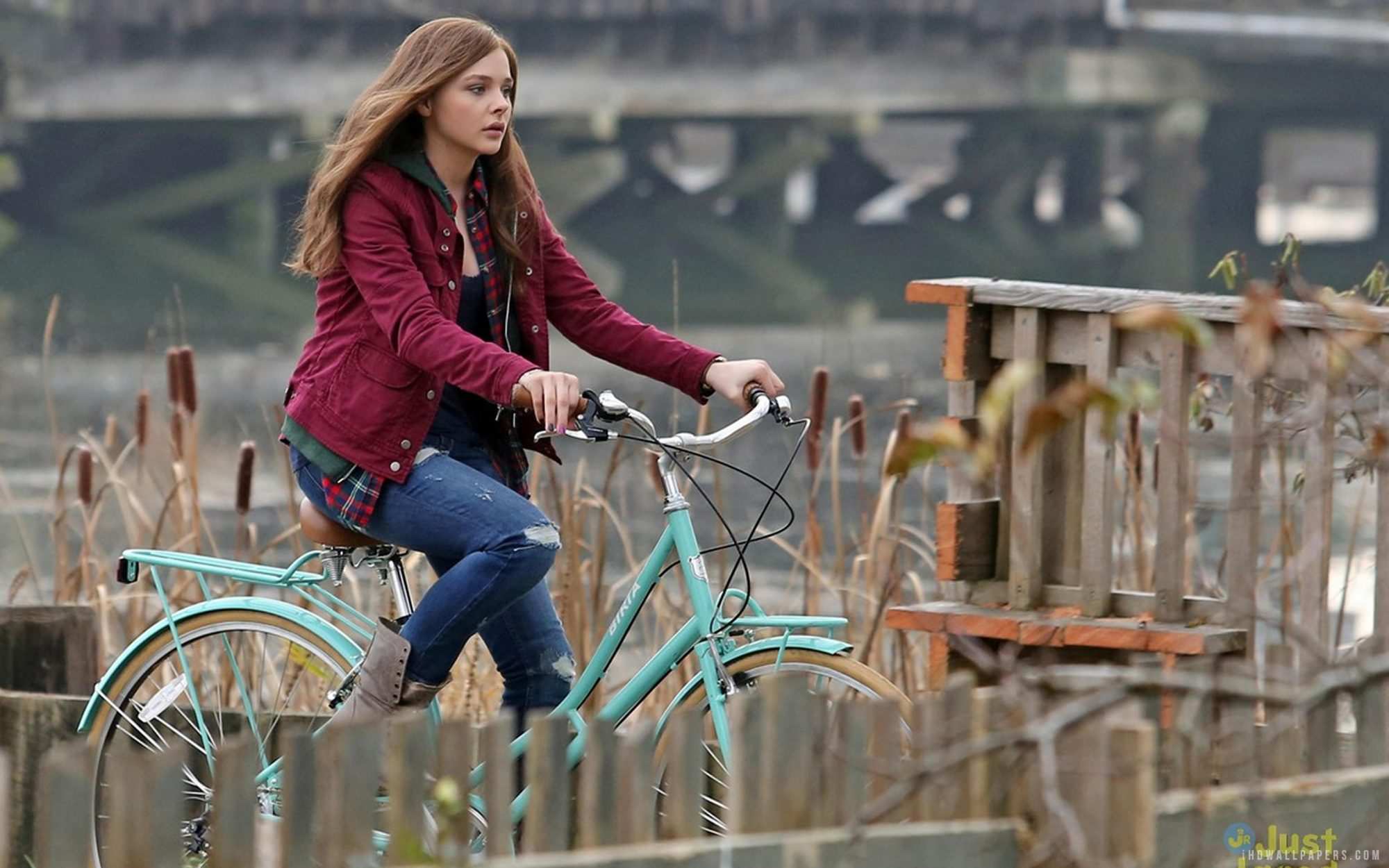 Picture of Chloe Grace Moretz in If I Stay