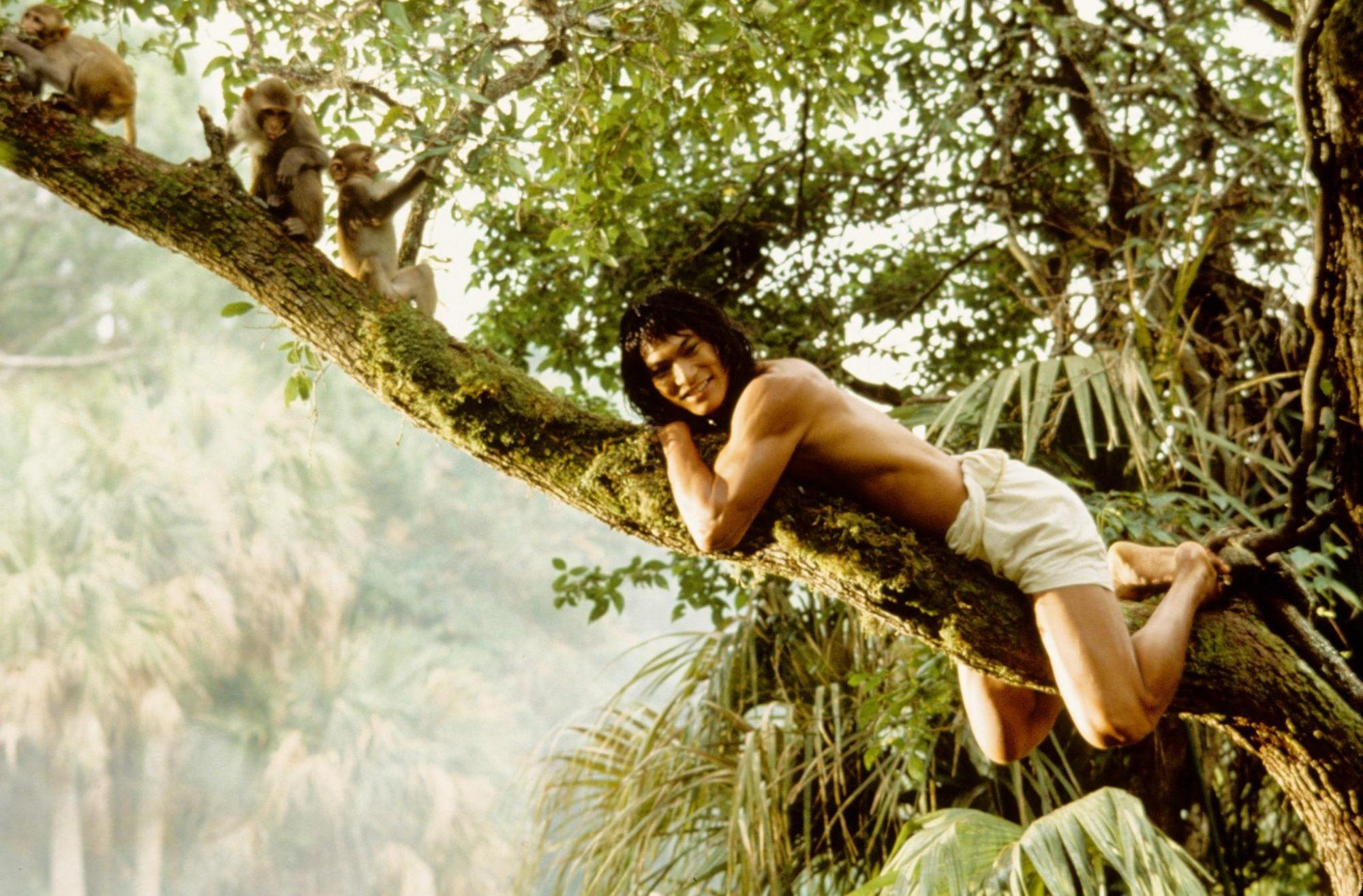 The-Jungle-Book-1994-image-the-jungle-book-1994-36224201-2048-1347.jpg