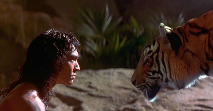 mowgli-and-shere-khan-2-the-jungle-book-94.jpg