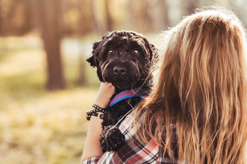 Very happy black fluffy dog