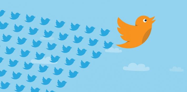 twitter-birds-flight