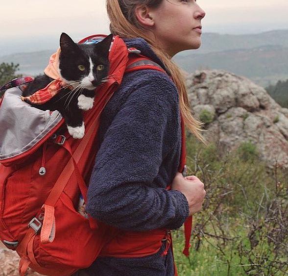 campingwithcats