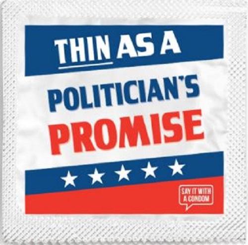 politicans-promise.jpg