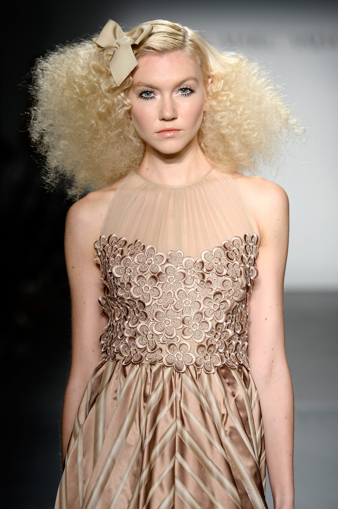 picture-of-nyfw-hair-frizz-photo.jpg