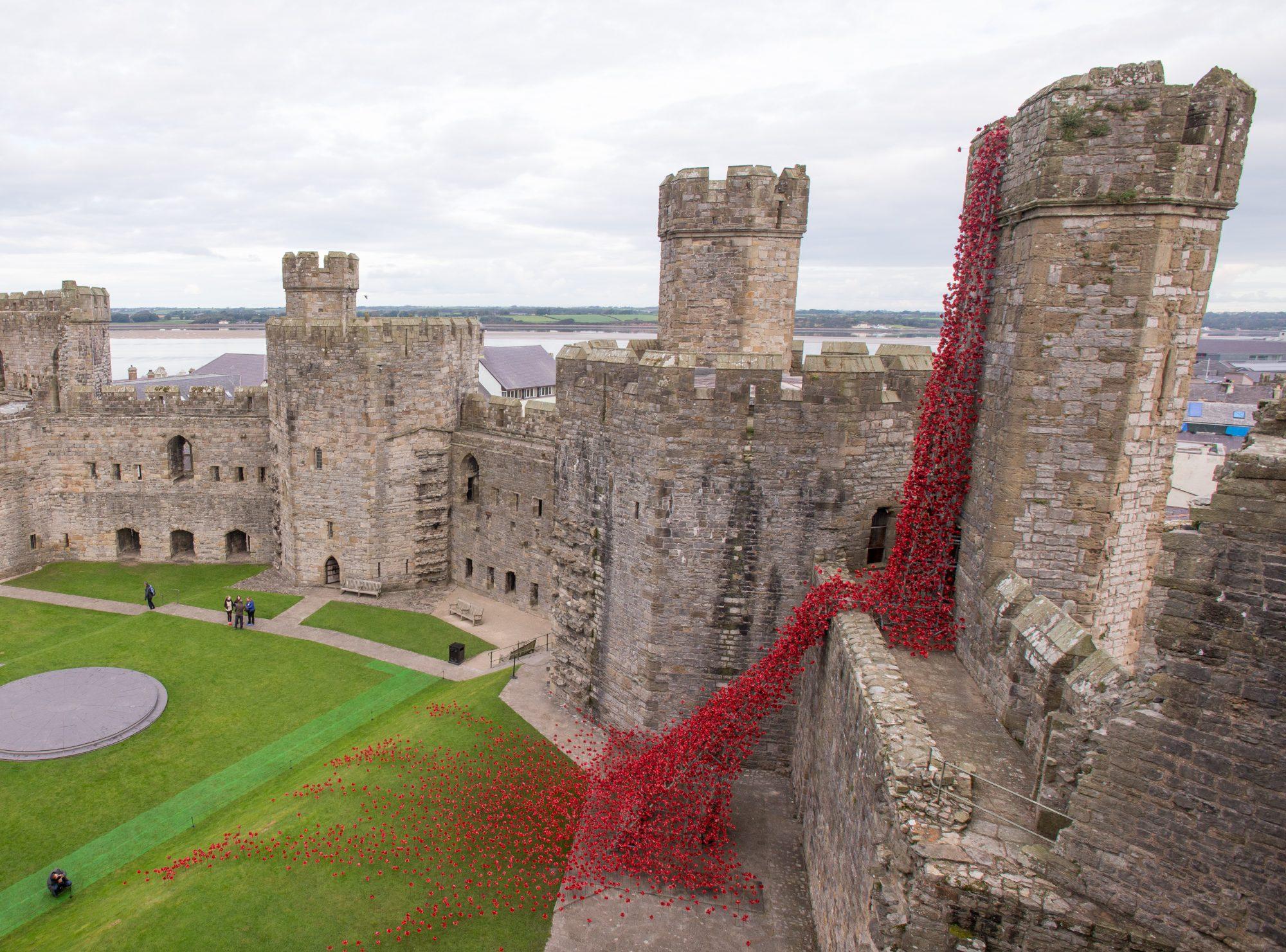 Iconic Poppy Sculpture Opens At Caernarfon Castle