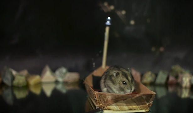 boat-hamster-harry-potter-615x362.jpg
