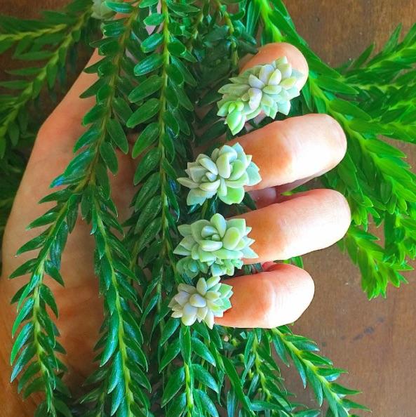 Succulentnails