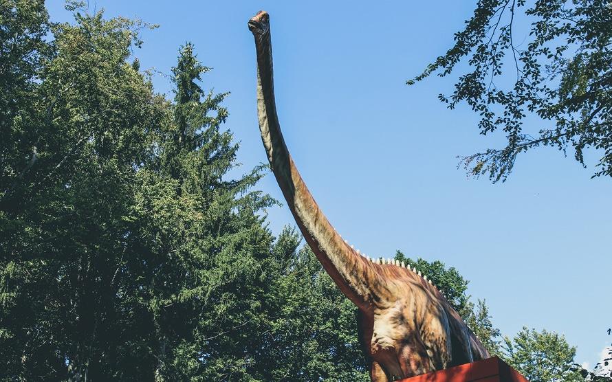 dinosaur-large