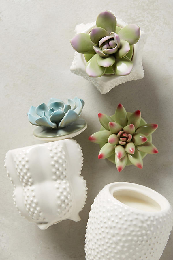 Succulent-Candles-Anthropologie.jpg