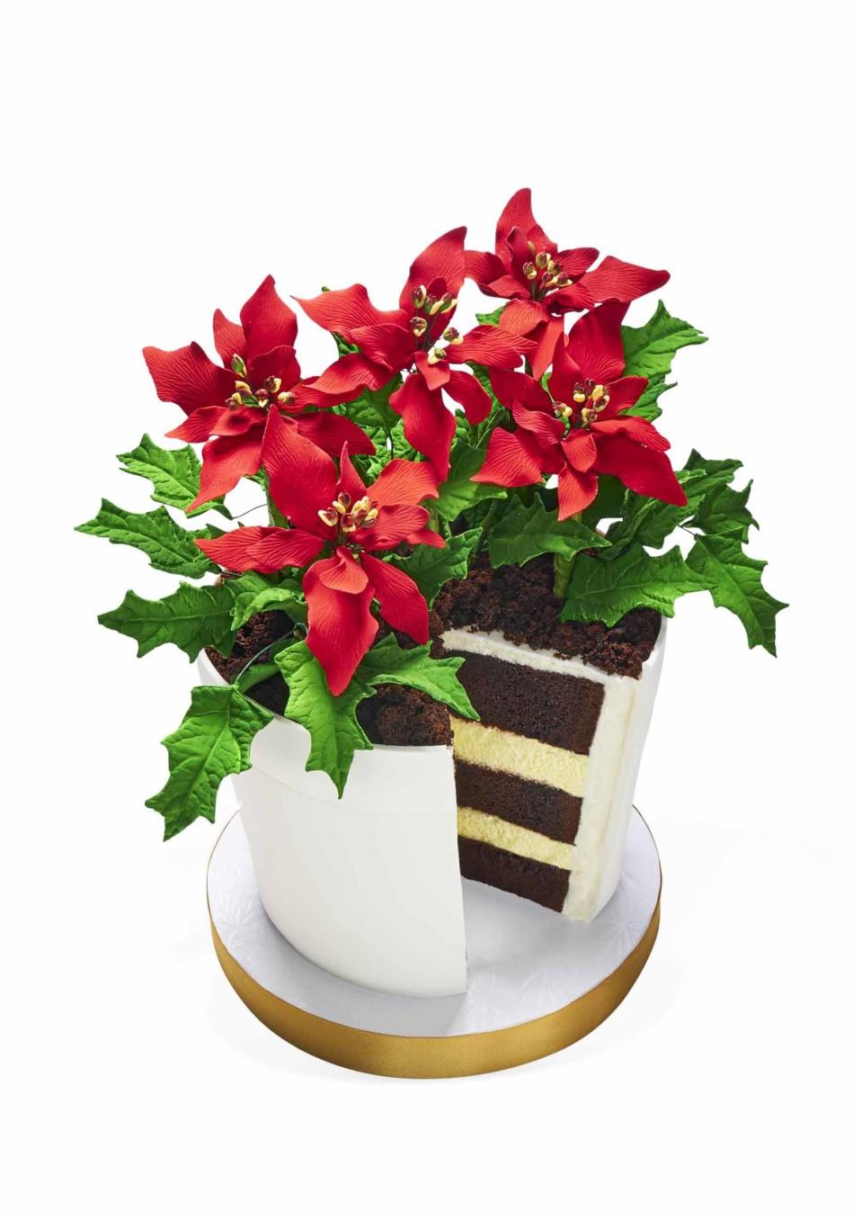 201612-omag-oprah-favorite-things-pointsetta-cake-949x1356.jpg