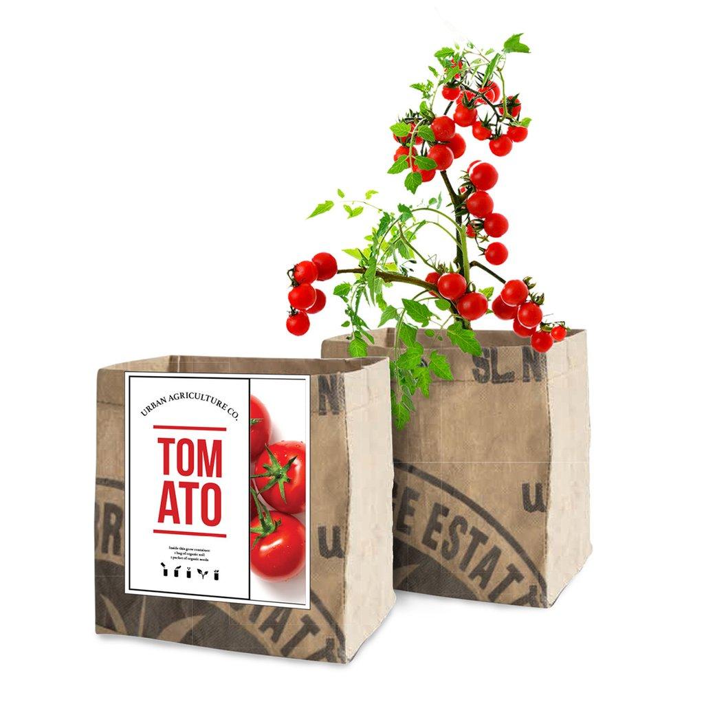 Tomato_1024x1024.jpg