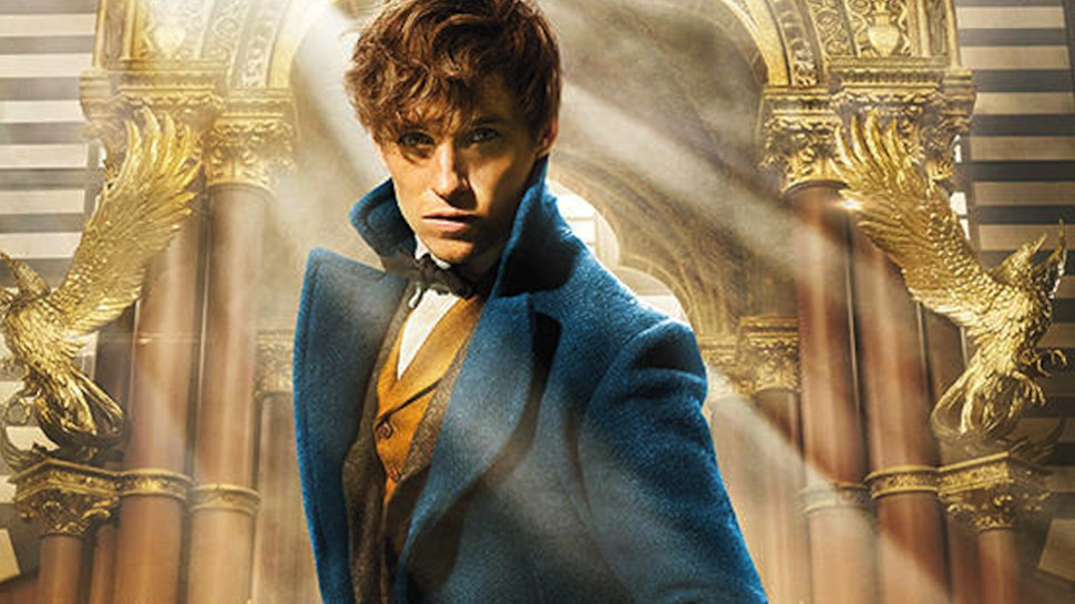 Picture of Eddie Redmayne as Newt Scamander in Fantastic Beasts and Where to Find Them