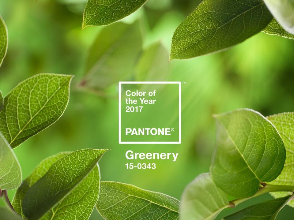 PANTONE-Color-of-the-Year-2017-Greenery-15-0343-leaves-2732x2048-1200x900.jpg
