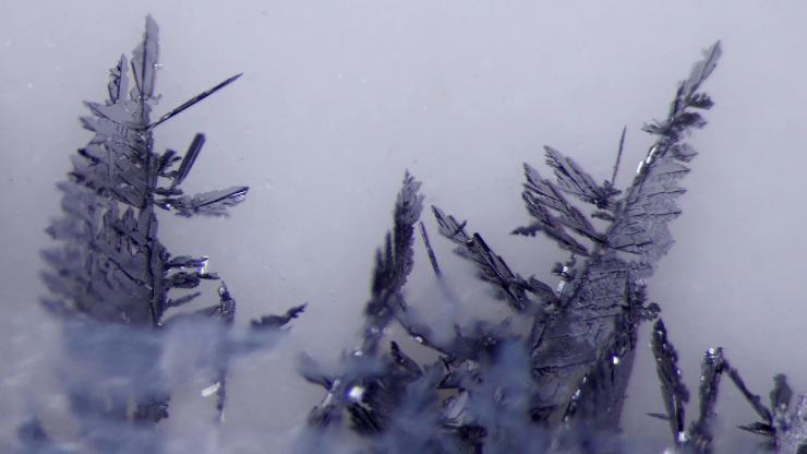 lead-metal-displacement-beauty-of-science_11.jpg