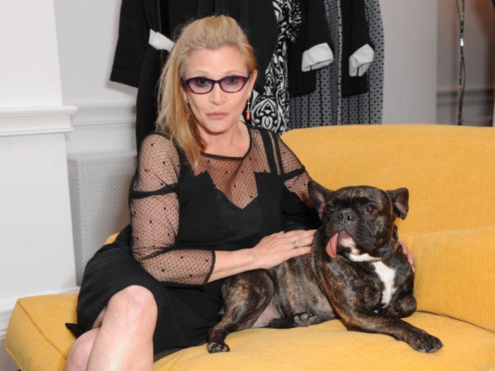 Marina Rinaldi Launches New Atelier