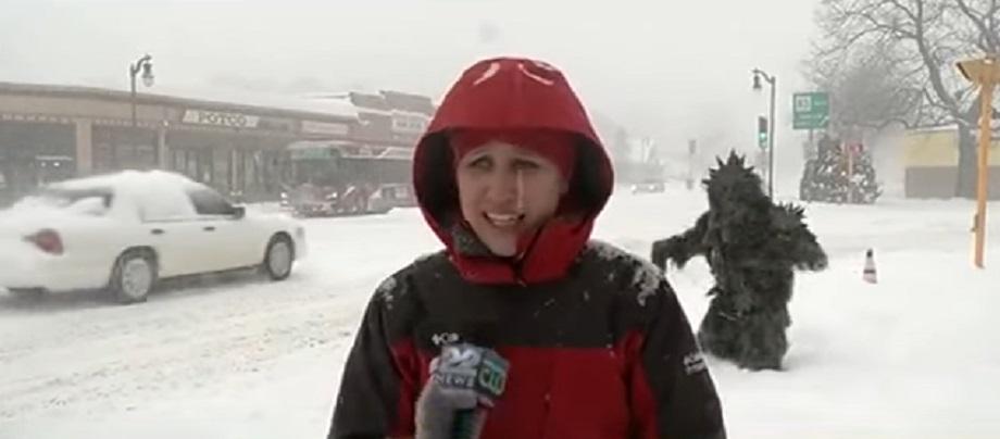 potsquatch crashes news broadcast