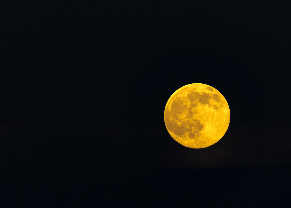 Beautiful yellow full solstice moon on a clear night