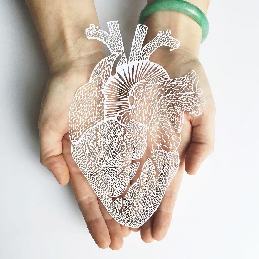 I-create-hand-cut-paper-versions-of-organs-58a4cf6e168ce__880.jpg
