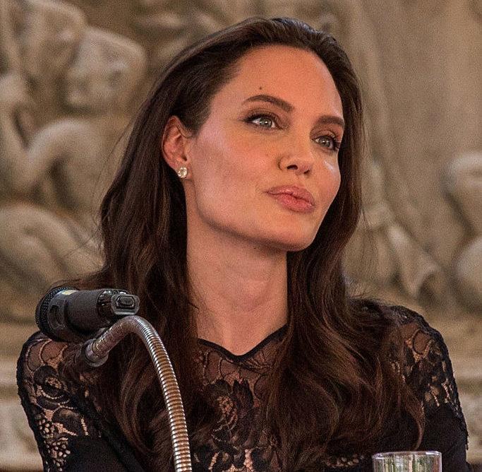 Angelina Jolie Handbag