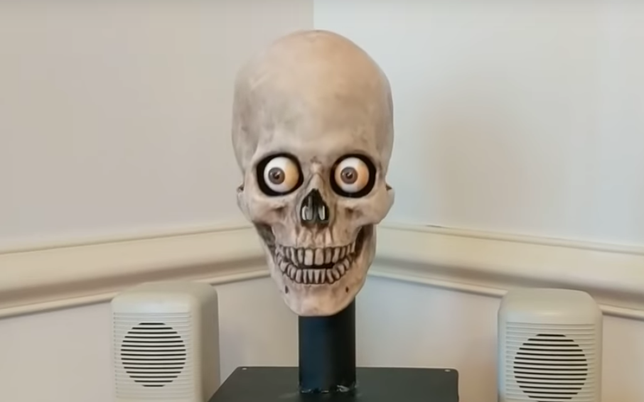 alexa skull