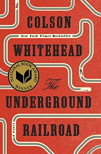 picture-of-the-underground-railroad-book-photo.jpg