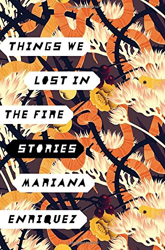 picture-of-things-we-lost-in-the-fire-book-photo.jpg