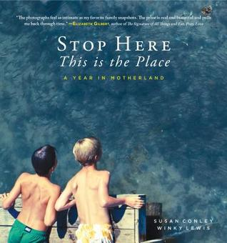 picture-of-stop-here-book-photo.jpg