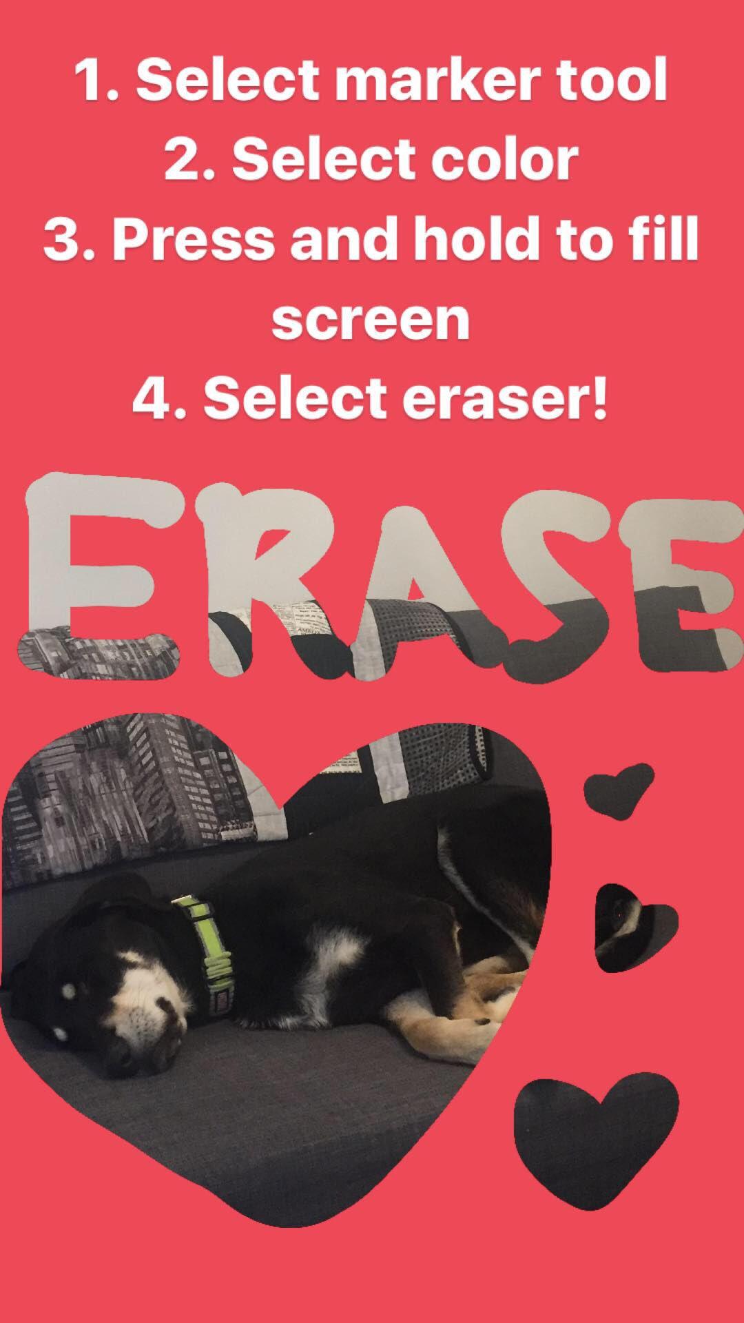 Erase.jpg