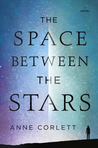 picture-of-the-space-between-the-stars-book-photo.jpg