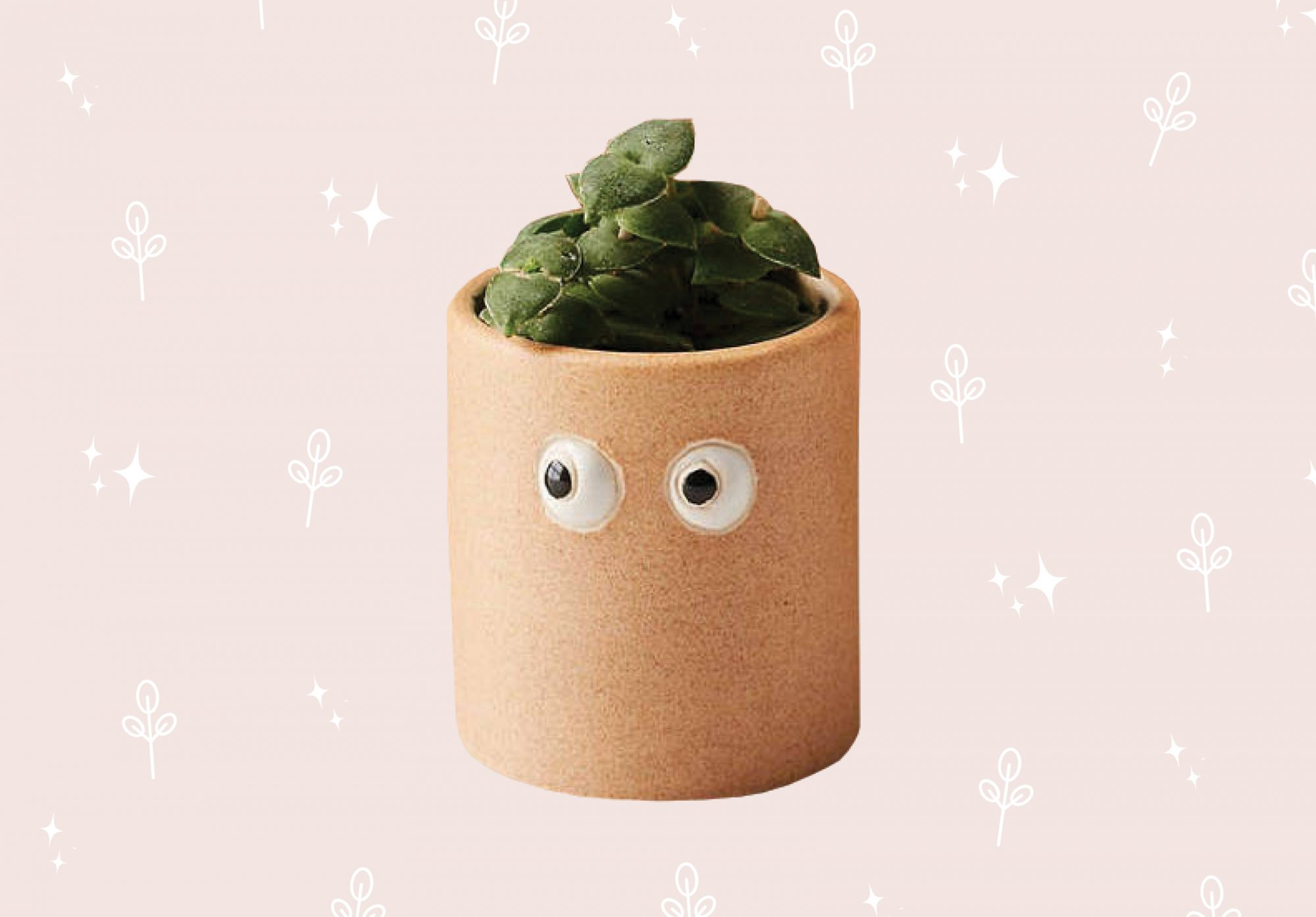 Planter with googly eyes on pink background.