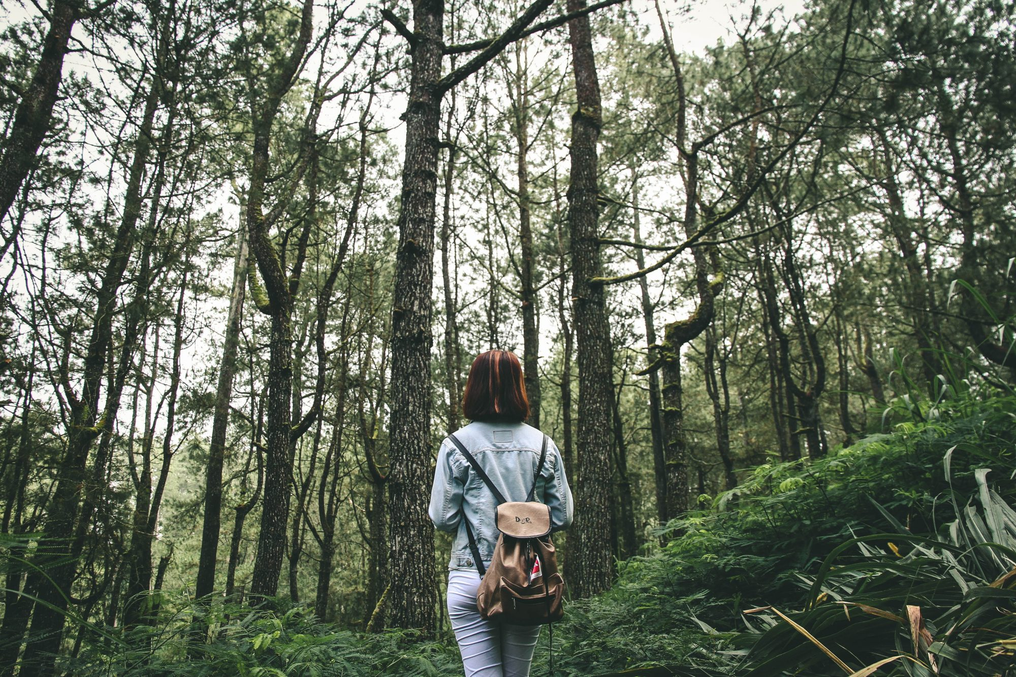 woman-alone-in-woods