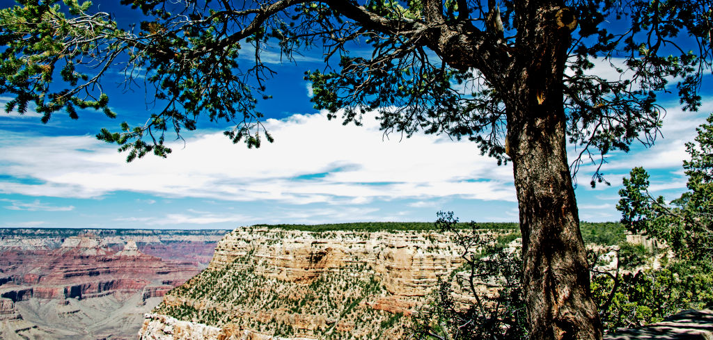 Grand Canyon View from South Rim Overlook, Arizona. (Photo by: Education Images/UIG via Getty Images)