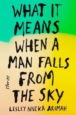 picture-of-what-it-means-when-a-man-falls-from-the-sky-book-photo.jpg