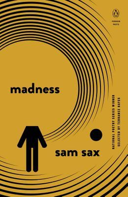 picture-of-madness-book-photo.jpg