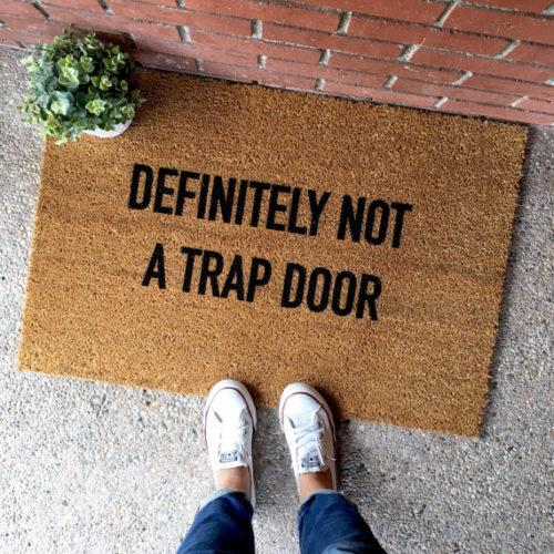 Not-a-trap-Door-e1504107503153.jpg