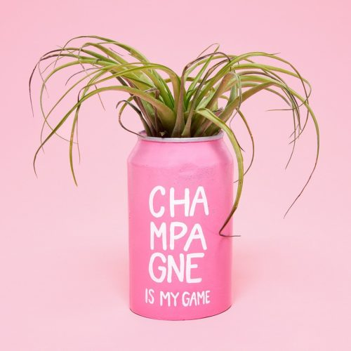 bando-hello_happy_plants-champagne_is_my_game_can-pink-e1504106691302.jpg
