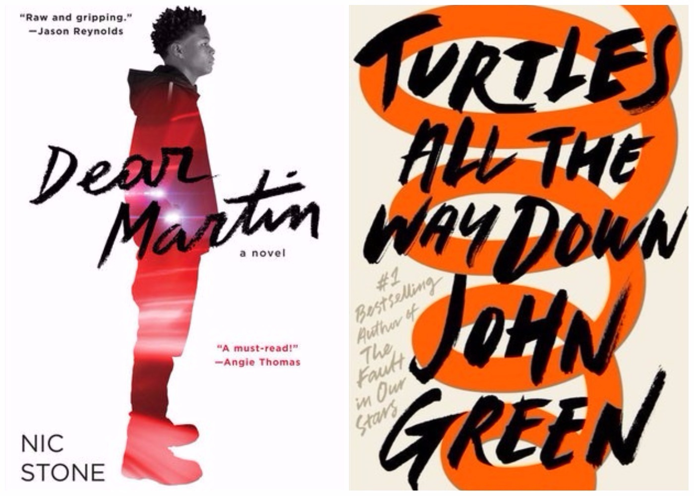 Picture of Dear Martin Turtles All the Way Down Books