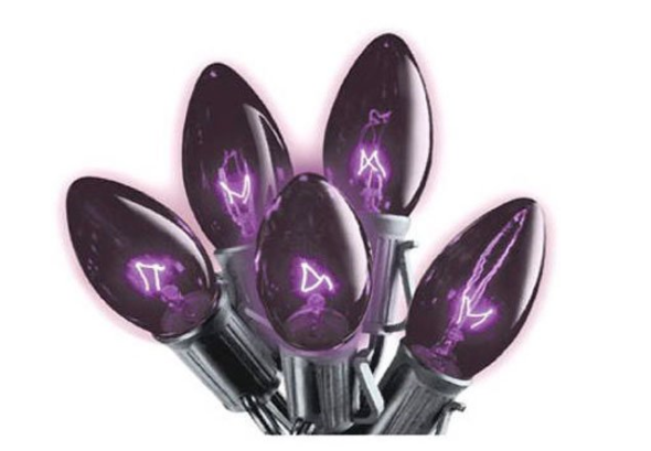 halloween-fairy-lights-black-bulb.png