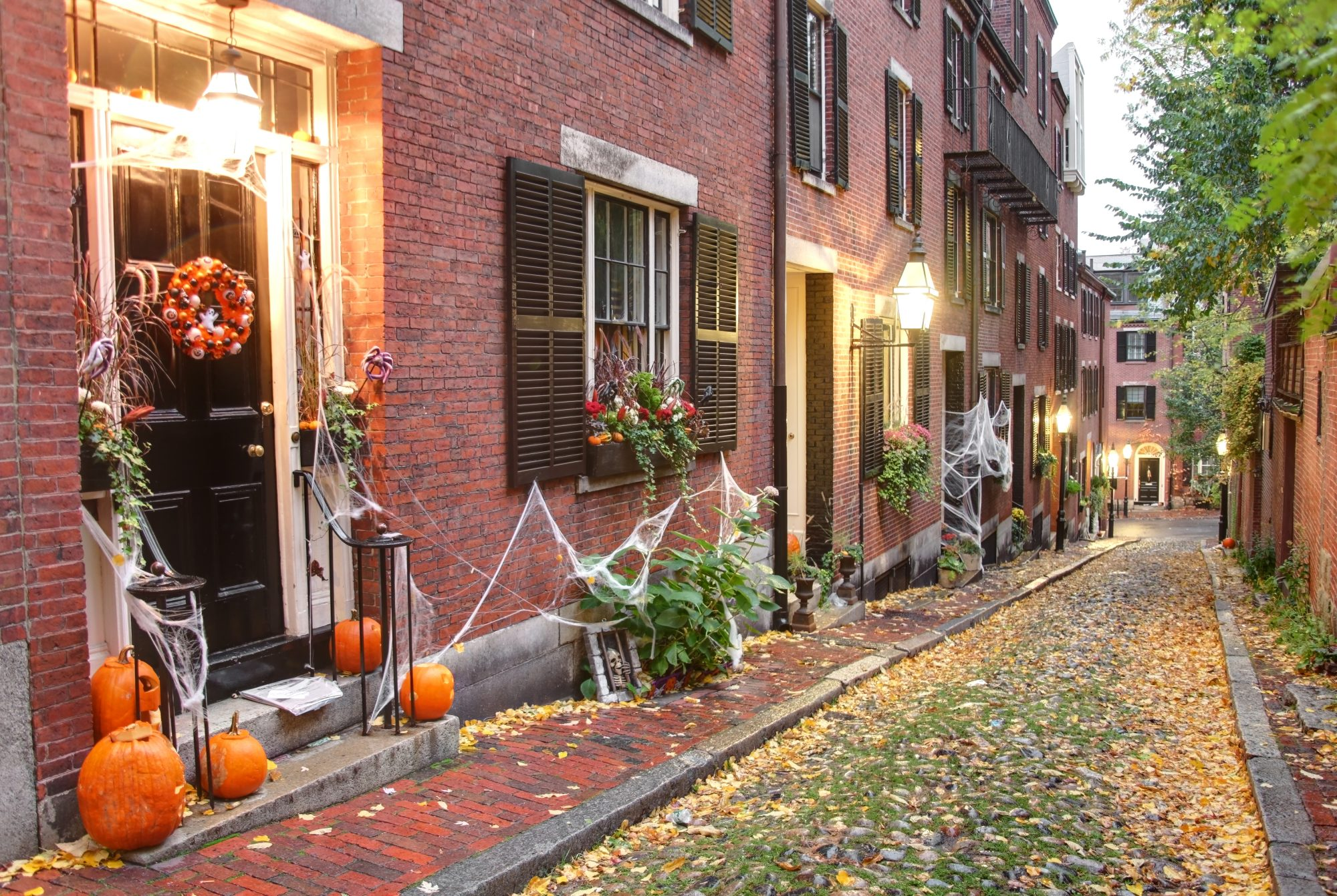 Image of Beacon Hill during Halloween