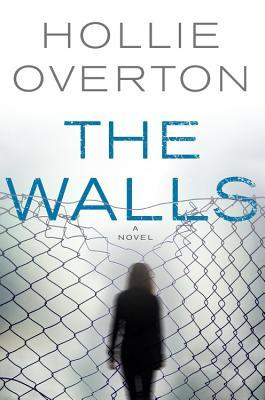 picture-of-the-walls-book-photo.jpg