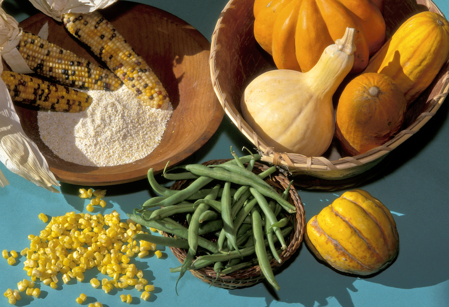 Early Woodland Indians grew corn, beans and squash that were also known as the Three Sisters. These grown vegetables were well stored throughout the winter months allowing the Shawnee plenty of food throughout the year.