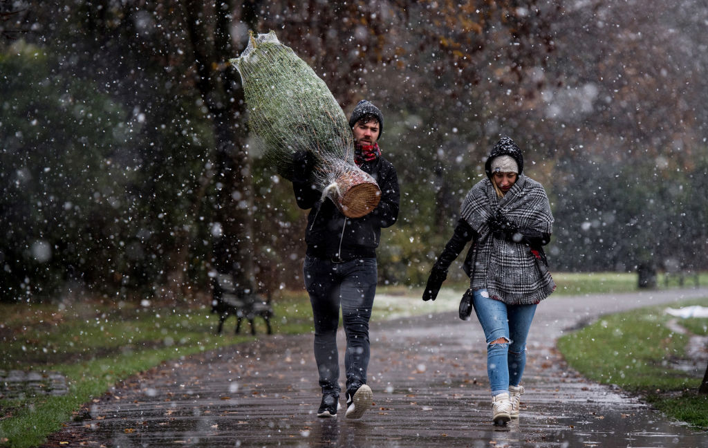 LONDON, UNITED KINGDOM - DECEMBER 10: A man carries a recently purchased Christmas tree through Brockwell Park as it snows on December 10, 2017 in London, United Kingdom. Heavy snow has hit many parts of the UK, closing roads and causing flight and rail delays in many areas. Up to 28cm of snow has been recorded by the Met Office across high ground and has issued an Amber warning. (Photo by Chris J Ratcliffe/Getty Images)