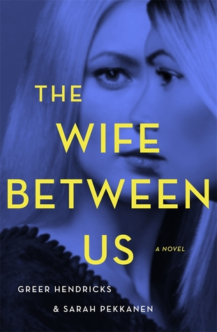 picture-of-the-wife-between-us-book-photo.jpg