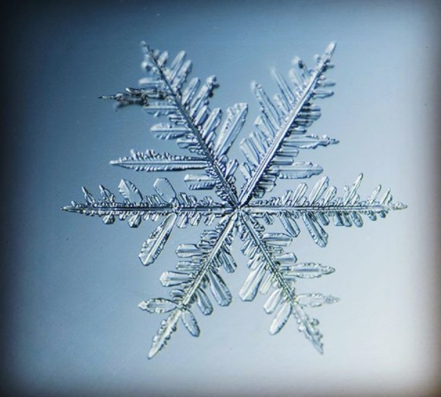 Picture of Snowflake