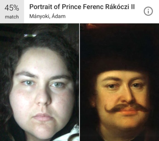 Image from Google's Arts and Culture app