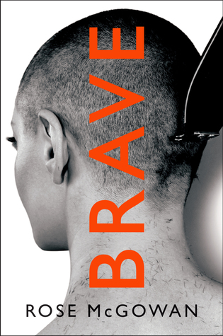 picture-of-brave-book-photo.jpg