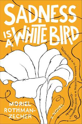 picture-of-sadness-is-a-white-bird-book-photo.jpg