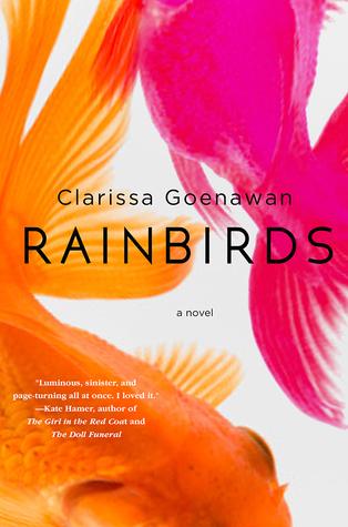 picture-of-rainbirds-book-photo.jpg