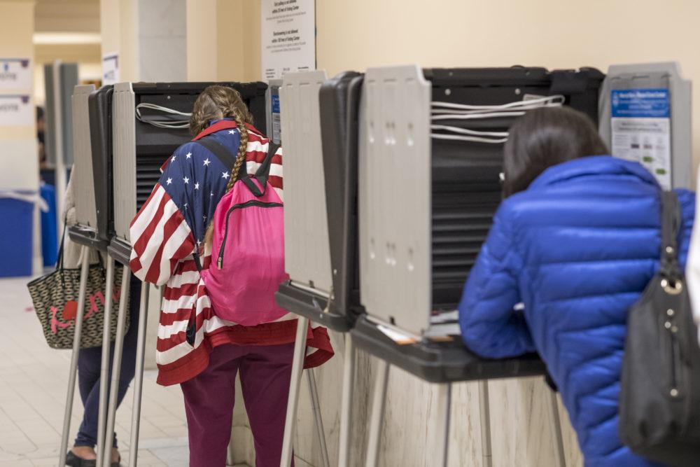 midterm primary elections